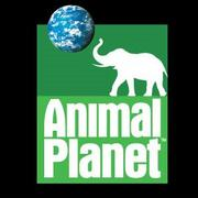 Most desired TV channel: Animal Planet