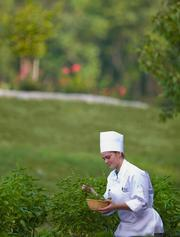 Cancer Treatment Centers of America — The Philadelphia company serves made-from-scratch, healthy, organic cuisine in its café. Here, a member of the culinary services team picks fresh herbs from the vegetable garden on the hospital's campus.