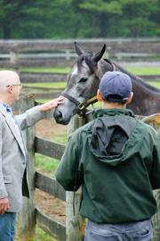 Ninety North members tour Fair Hill and visit their horses.