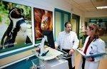 Community hospitals growing pediatric-care alliances