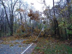 A tangle of wires downed by Hurricane Sandy in the Philadelphia area.
