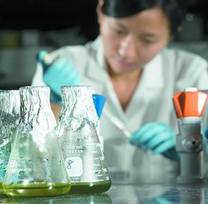 An ASU researcher tests algae.