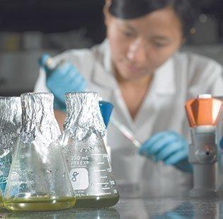 An ASU researcher tests algae.