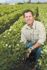 Executive Profile: Matthew Miller, senior managing director, Arizona and Utah, Harris Private Bank