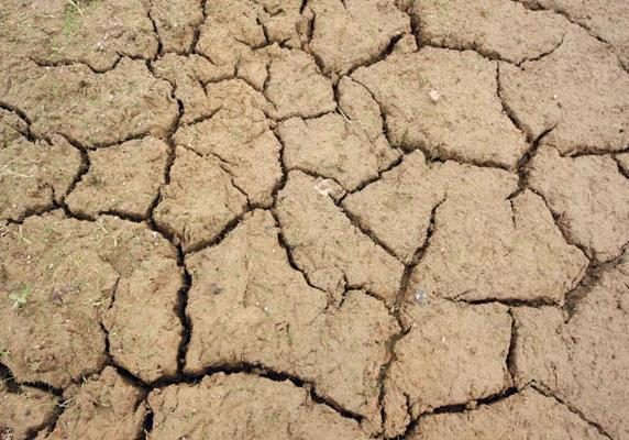 Drought conditions have persisted across New Mexico.