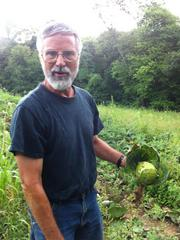 "Don Kretschmann, an organic farmer in Rochester, Butler County, shows a cabbage that has been hampered by the drought conditions. ""These plants have been in here since early April,"" he said. ""They should be full, big, robust heads by now and they're barely heading at all."" To see Kretschmann's farm click on the photo or visit: http://www.youtube.com/watch?v=RYmgM1EwMpg"