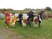 Songwhale employees at Janoski's Farm on Halloween.