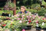 Mother's Day sales in bloom