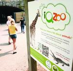 Pittsburgh Zoo, WQED team to teach with QR codes, smartphones