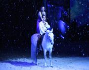 Cavalia's innovative multi-media production includes a 210-foot screen as a backdrop and project's new scenes seamlessly, making it seem as if the stage has magically transformed into winter.
