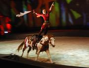Cavalia trick rider Katherine Cox performs on Cisco, a paint horse and one of 45 horses in the show. Cavalia tours with a staff of 120 people and hires another 200 from the local area.