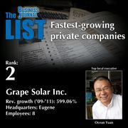 2: Grape Solar Inc.