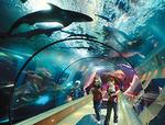Coast aquarium freed from some (high-interest) bonds