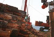 Carlton-based Cross & Crown is one of the rare logging companies able to invest in new equipment.