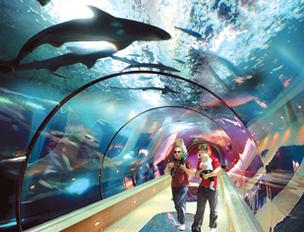 The Oregon Coast Aquarium is one of the state's most popular tourist attractions.