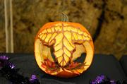 Finalist--Another entry in the 2012 Capitol Mall pumpkin-carving competition.