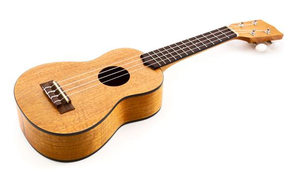 The recently opened Strum Shop in Roseville specializes in ukuleles, along with hard-to-find instruments including the harp guitar, the hammered dulcimer, the autoharp and the bouzouki.