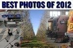 Best photos of 2012