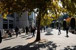 UC pepper-spraying report makes 49 recommendations