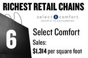 No. 6. Select Comfort, with average sales of $1,314 per square foot. The chain has 381 total stores and 3 stores locally. The stores sell mattresses.
