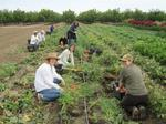 Center offers info session for farmer training series