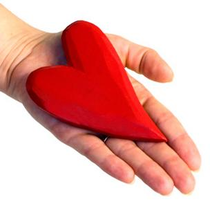 Organ donation heart hand