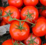 Tomato king sentenced to prison on racketeering charges