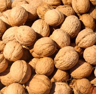 Organic walnut producer Dixon Ridge Farms produces energy through a biogas-powered generator, using walnut shells, normally a waste product, and the energy offsets the farm's electricity and propane needs.