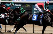 Business at state horse racing tracks, such as Cal Expo, has been steadily declining.