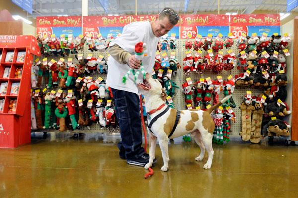 Ronald White picks a toy for his dog, Smash, at a PetSmart projected to help draw holiday shoppers to Florin Towne Centre.