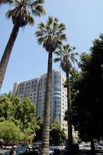 Condominium owners sue developer for construction woes