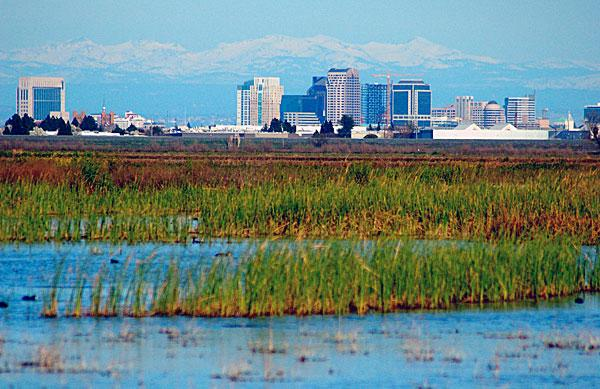 Federal funding for creating wetlands in North America, like these along the Yolo Causeway, could be cut by 60 percent in three years.