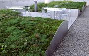 The Lottery headquarters has  a place on the roof where workers can take a break amid the greenery.