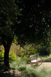 UC Davis students expressed a wish for a calm place that evoked nature as well as green building practices.