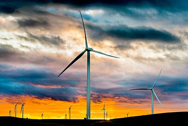 The California Independent System Operator Corp., which oversees the state's electrical grid, says the state's wind turbines are generating record levels of electricity this week.
