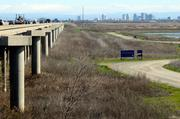 The Yolo Bypass not only provides flood protection for the Sacramento region but also helps keep too much water from flowing into the Delta at once.