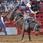 Heart to rock San Antonio Stock Show & Rodeo