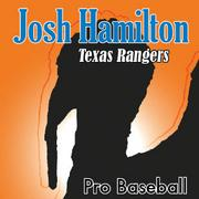 Josh HamiltonTexas RangersThe Rangers slugger came up empty when it mattered most this season and was a big reason why the American League team lost its divisional lead and any shot at a deep playoff run. He blamed his hitting problems on caffeine-induced vision problems and then, once the Rangers were eliminated from the post-season, began his pursuit of a multi-year contract.