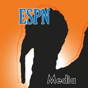 ESPNThe four-letter network reportedly cut loose an online editor and suspended an anchor over an ethnic slur used to criticize the play of then New York Knicks guard Jeremy Lin, a Taiwanese-American.