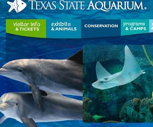 Texas State Aquarium officials have set a new attendance record.