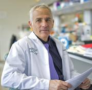 The UT Health Science Center's Dr. David Weiss