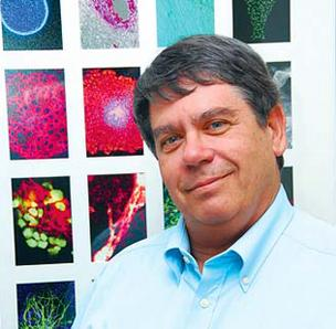 CIRM President Alan Trounson: Grants will help take stem cell research into human trials.