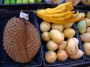 You'll find Durian and Buddha's Hand, too.
