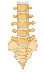 X-Spine lands FDA approval for two spinal implants