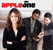 Small companies - No. 5: AppleOne Employment Services Santa Clara
