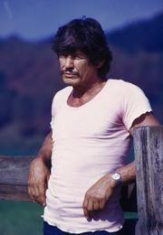 Charles Bronson appeared in The Dirty Dozen, along with a host of other stars.