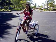 Elaine Leung owns Trike to Work Day.