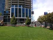 One Rincon Hill tower rising behind Emerald Park