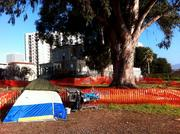 This camp is next to the historic Camron-Stanford House at Lake Merritt.