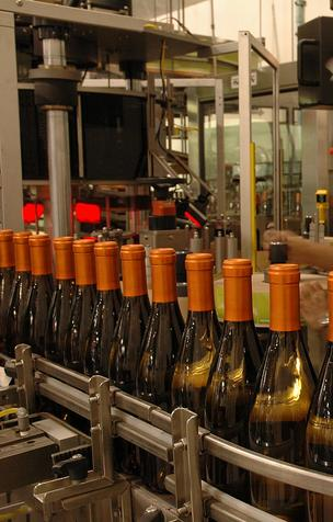 New bottling line at revamped Steelbird Cellars winery owned by Don Sebastiani & Sons.